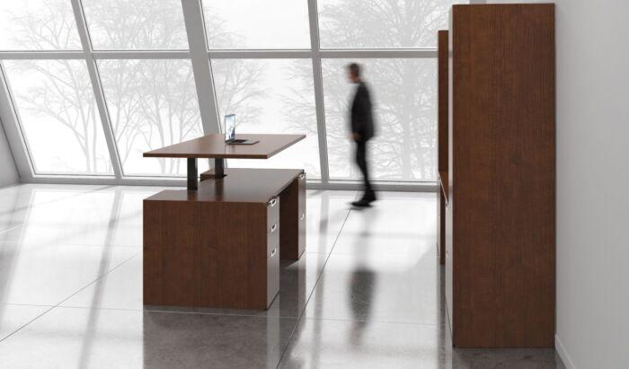 Modern Sit Stand Desk