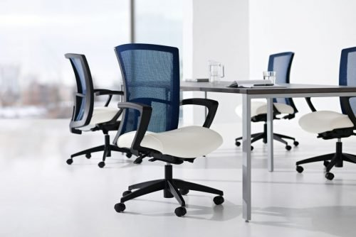 blue mesh back task chair with white seat