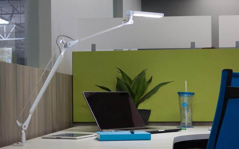 ESI Vivid-LEX Desk Lamp Clamped To A Desk With Green Wall