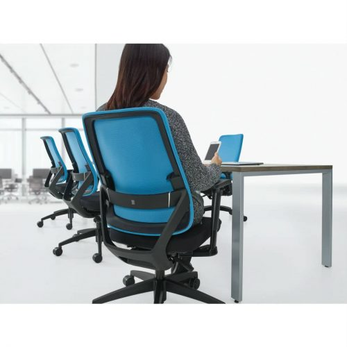 Sora Adjustable Ergonomic Task Chair