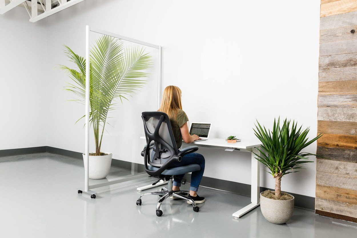 A single workstation with a Split model screen to the left. The woman is using a laptop, and a potted plant rests on the floor beside her.